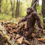 【進化のもつ不完全さ】進化はその場しのぎに過ぎない?!「なぜ僕たちは病気になるのか」